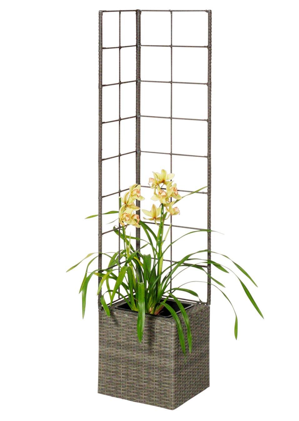 modern und edel pflanzk bel mit rankhilfe paros grau. Black Bedroom Furniture Sets. Home Design Ideas