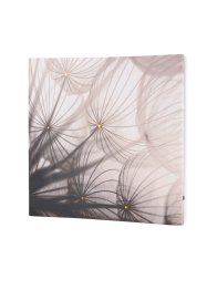LED-Bild Pusteblume, bpc living bonprix collection