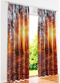 Verdunkelungsvorhang mit Wald Motiv (1er Pack), bpc living bonprix collection