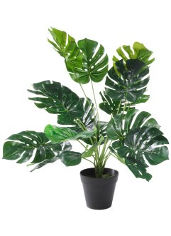 "Kunstblume ""Monstera"", bpc living"